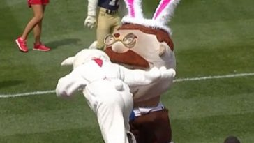 easter bunny tackles teddy