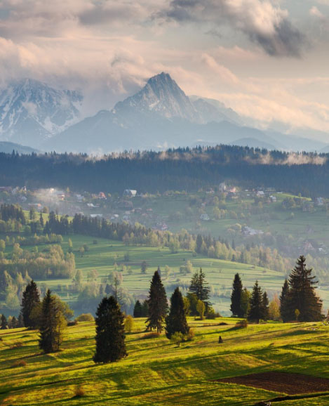spring view of the tatras