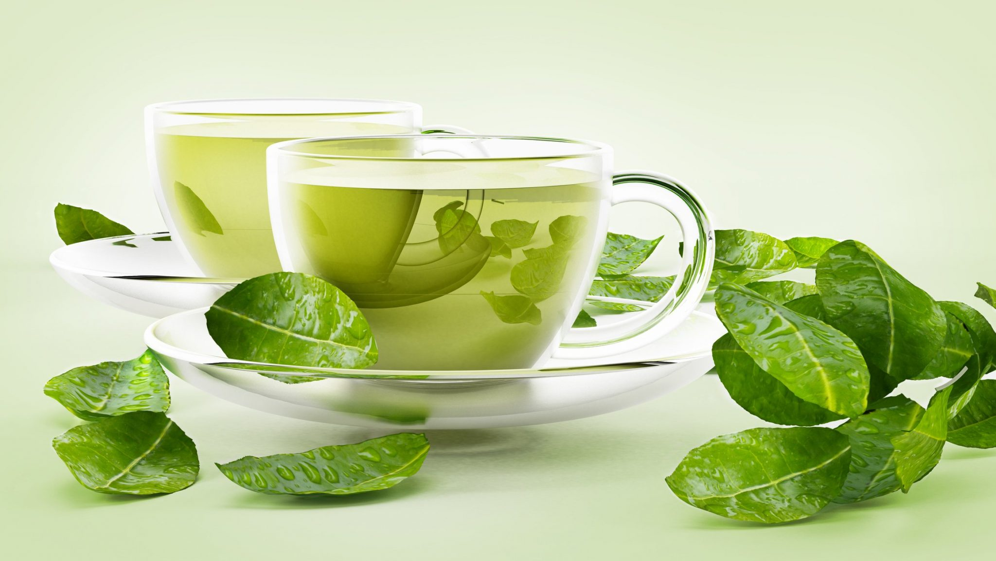 Weight Loss Tips and Tricks to A Perfect Figure green tea
