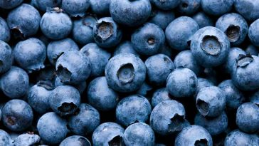 5 Best Superfoods For A Healthier Life blueberries
