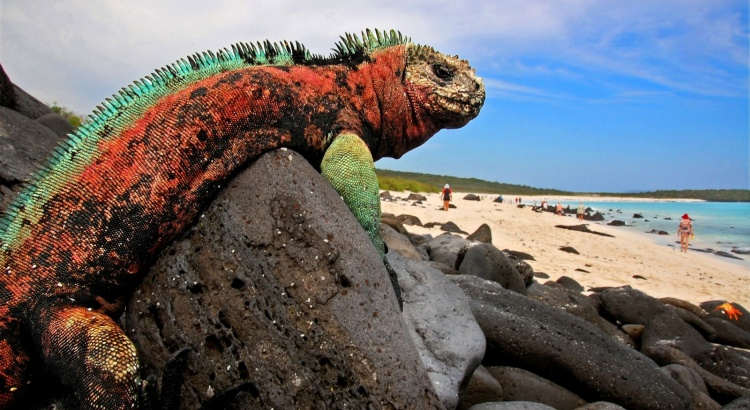 See The Most Untouched Places In The World galapagos