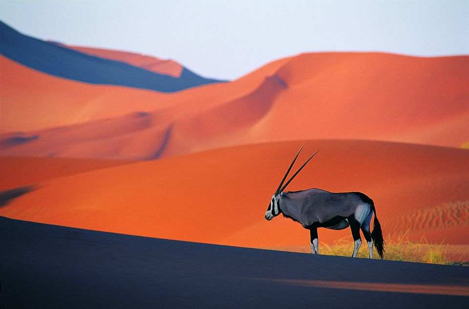 See The Most Untouched Places In The World namibia
