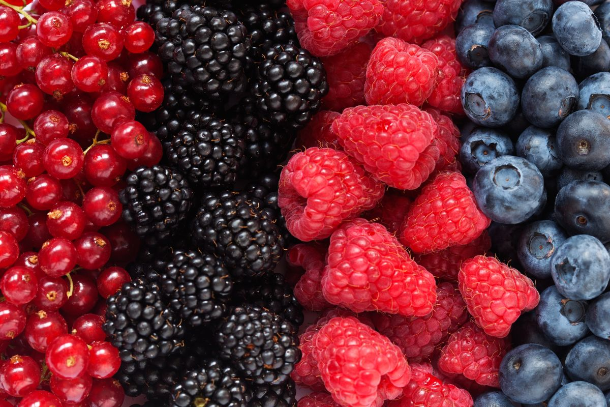 Top Cancer-Fighting Foods You Have To Know berries