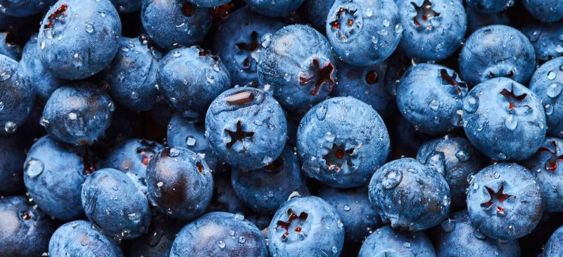 Tasty Fat-Burning Fruits You Need In Your Life blueberries