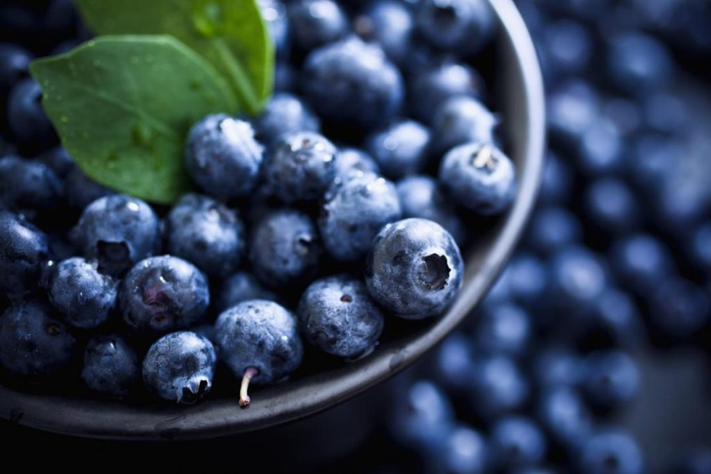 Best Foods To Increase Dopamine Levels And Productivity blueberries