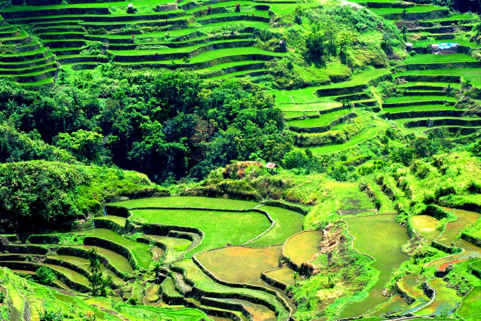 Must-Visit Amazing Locations In Southeast Asia ifugao rice terraces