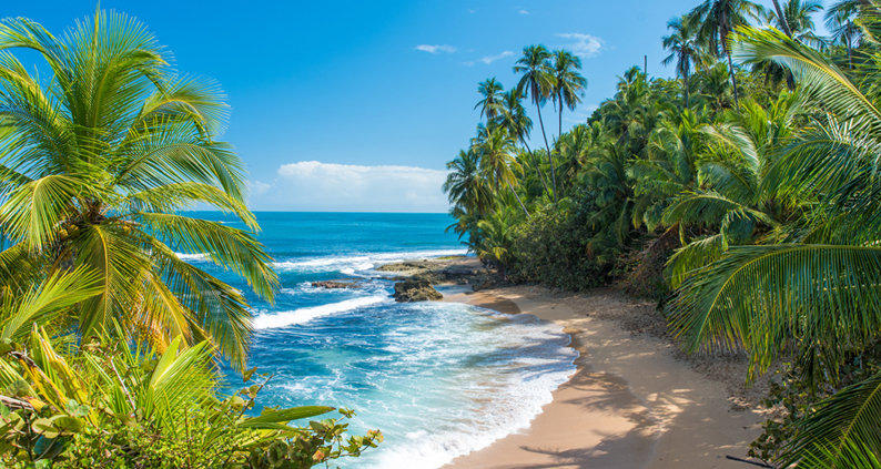 The Best Countries To Study Abroad In 2019 costa rica